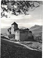 Liechtenstein - SCHLOSS VADUZ   - Photo Rare Prise Sous Cet Angle  - Photo P.OSPELT -à SCHAAN  Ref 07687 - Liechtenstein