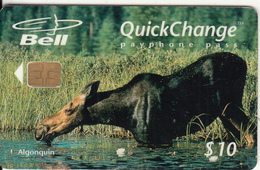 CANADA - Animal, Ontario Parks/Algonquin, Tirage 8000, 05/97, Used - Kanada