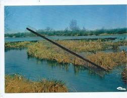 CPM - Bourdon -(Somme) - Les Marais - Un Coin Rêvé Des Pêcheurs Et Des Promeneurs - France