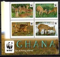 Serie De Ghana - W.W.F.