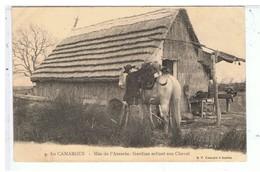 CPA-13-EN CAMARGUE-MAS DE L'AMARÉE-ANIMEE-GARDIAN SCELLANT SON CHEVAL - France