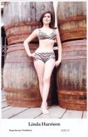 LINDA HARRISON - Film Star Pin Up PHOTO Postcard - Publisher Swiftsure Postcards 2000 - Artiesten
