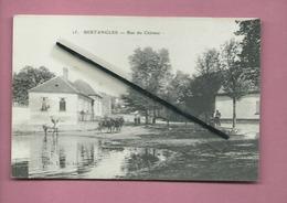 CPA  - Bertrangles  - Rue Du Château  -( Mare ) - France