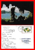 CPSM/gf  HA LONG BAY (Viêt-Nam)   La Caverne  De Trinh Nu (vierge)...C939 - Vietnam