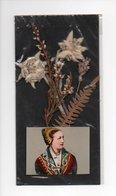 Costume De Savoie, Tarentaise, Veritable Edelweiss (18-2011) - B. Plantes Fleuries & Fleurs