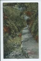 Guernsey Postcard Rp Water Lanes Moulin Huet . Unused - Guernsey