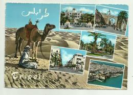 VEDUTE DI TRIPOLI VIAGGIATA FG - Libya