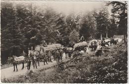 VOLOGNE - LA BRESSE  Exploitations Forestières  J.J. CLAUDE Et Ses FILS ....(CPSM: 14x9cm) 2 Scans - Unclassified