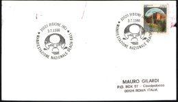 BEACH VOLLEY - ITALIA BIBIONE (VE) 1998 - MANIFESTAZIONE NAZIONALE BEACH BALL - MAILED CARD - DAMAGED - Pallavolo