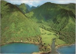 Tahiti - Vallée Sauvage De La Presqu\'ile - Tahiti