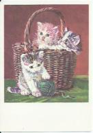 Chats - Katten - Cats - Katzen - N. 825 - Chats