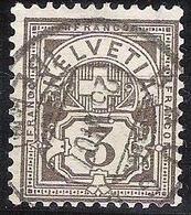 Schweiz Suisse 1906: Ziffer Mit WZ I (+) Zu 81 Mi 83 Yv 101 3c Braungrau Mit O BRÜGG (BERN) 23.VI.07 (Zu CHF 100.00) - 1882-1906 Armoiries, Helvetia Debout & UPU