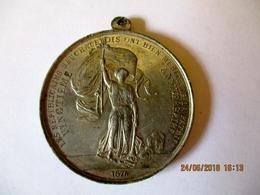 Suisse: Médaille 20 Ans Républicains Neuchâtelois 1876 - Professionnels / De Société