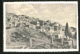 CPA Safed, Vue Générale - Palestine