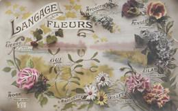 Langage Des Fleurs. Myosotis, Pensée, Lilas, Oeillet, Marguerite, Rose, Gui, Lierre - Fleurs