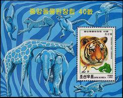 North Korea 1999 Tiger Souvenir Sheet Unmounted Mint. - Korea, North