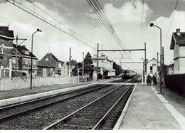 LANDEGEM-STATION-TREIN-GARE-TRAIN - Nevele
