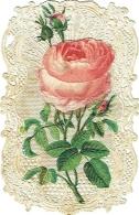 Image Religieuse. Canivet à Système. Rose Et Vierge. Dopter à Paris. - Imágenes Religiosas
