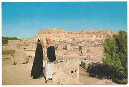 The Old Villages At Al-Hassa - Saudi Arabia - H2614 - Arabia Saudita