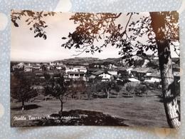 72TO ) Cartolina Di Niella Tanaro - Italie
