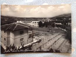 77TO ) Cartolina Di Niella Tanaro - Italie