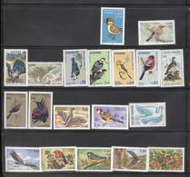 Lot De Timbres D' Andorre Thème Oiseaux - Collections, Lots & Series