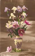 Zele : Ik Zend U Deze Bloemen Uit Zele. .. - Zele