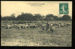 La Normandie Illustrée Moutons En Paturage PRS - Haute-Normandie