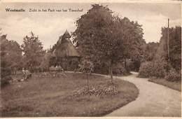 Westmalle - Zicht In Het Park Van Het Torenhof (1942) - Malle