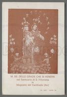 EM2010b MARIA SS. DELLE GRAZIE SANTUARIO DI S. FILOMENA IN MUGNANO DEL CARDINALE AVELLINO Formato Cartolina - Religion & Esotericism