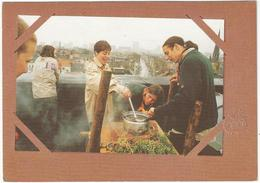 8Eb-627: SCOUTING à La Carte  : Met Een Ezel 2006 > Maldegem - Scoutisme