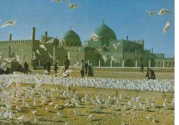 Mazar-i-Sharif  Mosquee Cpsm TBE - Afghanistan