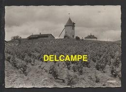 DD / 71 SAÔNE ET LOIRE / ROMANECHE THORINS / VIGNOBLES DU MOULIN À VENT / AU DOS CACHET DU CAVEAU - Autres Communes