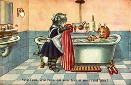 Chat Humanisé - Vive L'eau, Vive L'eau Qui Nous Lave Et Nous Rend Beau ! - Katten