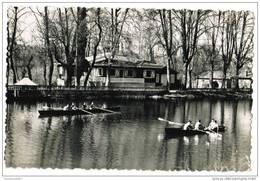CPSM COGNAC - La Charente à Robinson - Animée - Aviron - Ed. Van Eyk Rouleau N°3 - Cognac