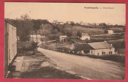 Froidchapelle - Pont-Alsort - 1951 ( Voir Verso ) - Froidchapelle