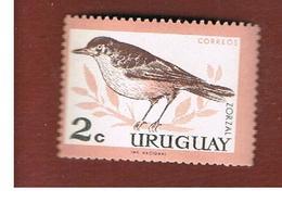 URUGUAY   -  SG  1205 -  1962 BIRDS  - MINT ** - Uruguay