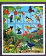Nev040c FAUNA VOGELS OWL BUTTERFLY HUMMINGBIRD CARIB BIRDS VÖGEL AVES OISEAUX ANTIGUA & BARBUDA 1995 PF/MNH #READ# - Collections, Lots & Series