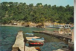 RT31.295 BIS. VAR .TOULON CALANQUE DE MAGAUD.BAR. RESTAURANT - Toulon