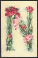 B156   Catharina Klein, Alphabet De Fleurs, Lettre N - (édition Récente) - Klein, Catharina