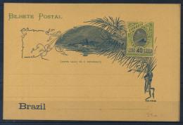 Brasile 1896 Intero Postale 100% 40 R. - Postal Stationery