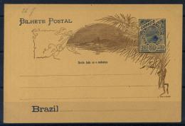 Brasile 1901 Intero Postale 100% 50 REIS - Postal Stationery