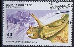 PIA  - 1995 : SAHARA OCC. - Animali Preistorici - Pentaceratops - Sahara Spagnolo