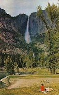 CARTE POSTALE ORIGINALE DE 9CM/14CM : YOSEMITE NATIONAL PARK CALIFORNIA   USA - Yosemite