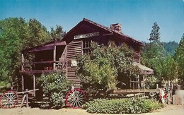 CARTE POSTALE ORIGINALE DE 9CM/14CM : YOSEMITE THE BRET HARTE CABIN AND HANGMAN'S TREE  CALIFORNIA  USA - Yosemite