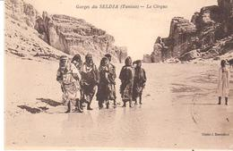 POSTAL    GORGES DU SELDJA  -TUNISIE  -LE CIRQUE  (EL CIRCO) - Postales