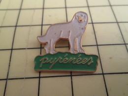 710d Pin's Pins / Beau Et Rare / ANIMAUX : CHIEN DE BERGER DES PYRENEES PATOU - Animaux