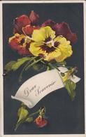 DOUX SOUVENIR---( Fleurs De Pensées + Carte Gauffrée )---voir 2 Scans - Flowers