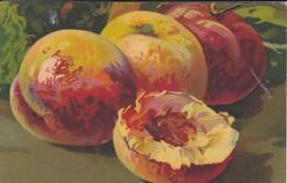 FRUITS--nature Morte--( Serie VELLUTI 1004 )--voir 2 Scans - Flowers