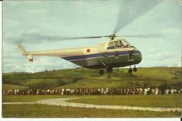 Ruanda-Urundi - Voyage Du Roi Au Congo été 1955 - Un Hélicoptère Va Atterrir à Kitega  (2 Scans) - Ruanda-Urundi